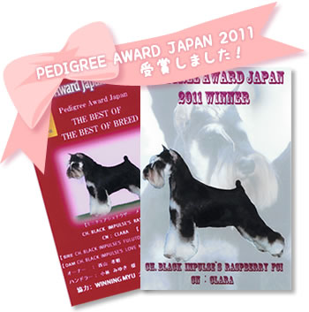 PEDIGREE AWARD JAPAN 2011 受賞しました!